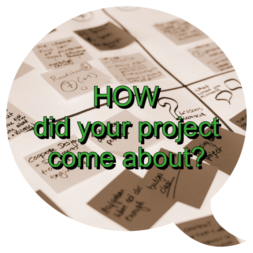 How did your project come about?