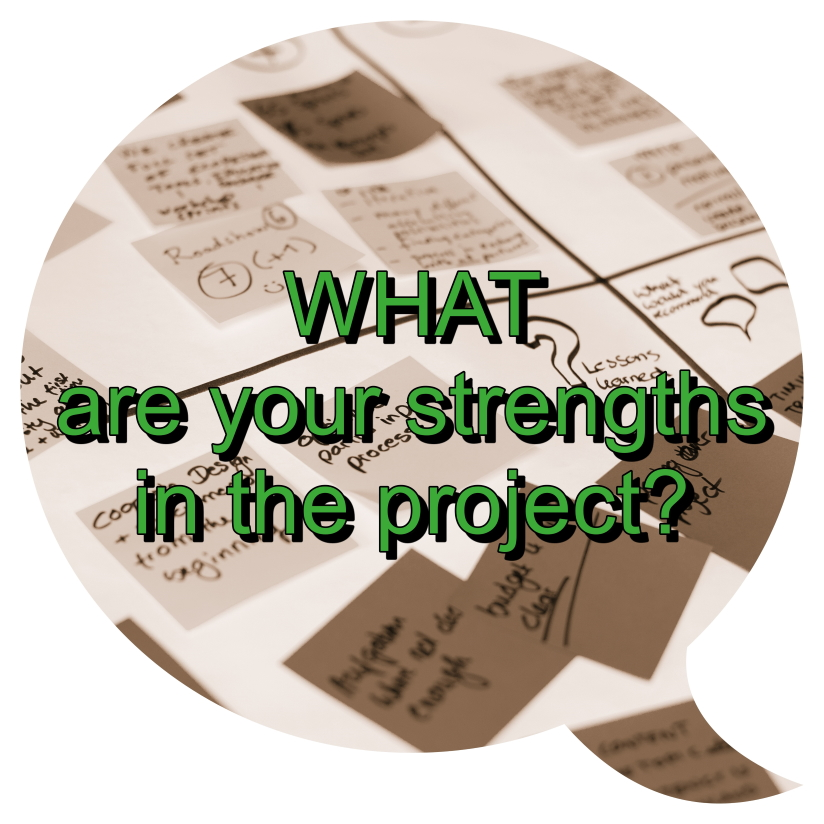 What are your strengths in the project?